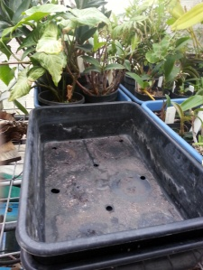 Inner (upper) trays with holes to allow the water to come up into the pots.