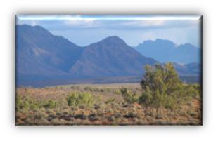 Robert Bates Semi-arid Shrubland.jpg