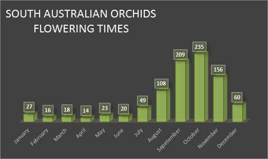 chart-south-australian-flowering-times