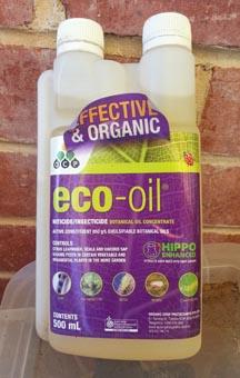 Eco Oil.jpg