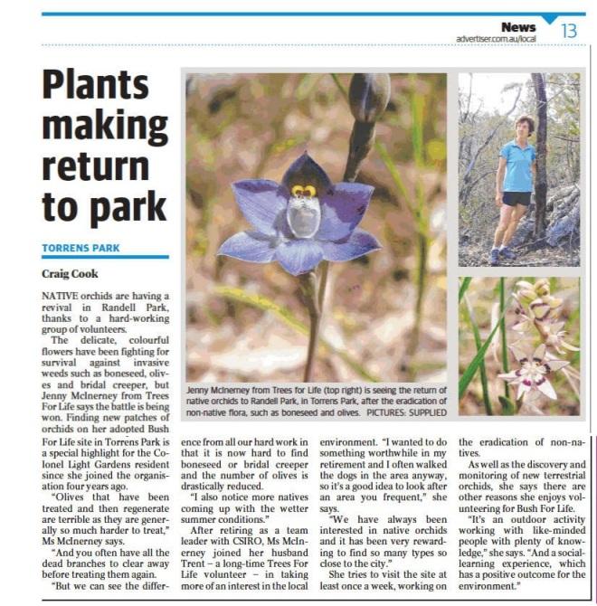 Plants Return to Park